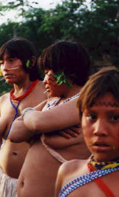 Indian Tribes in Brazil